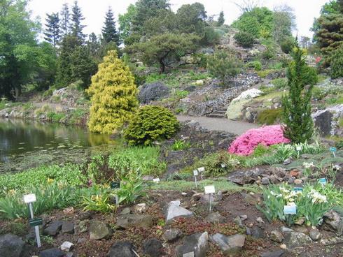 The Dutch Garden