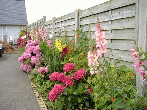 French Garden Pictures Garden Flower Photos