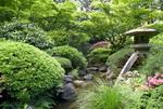 Garden for Health