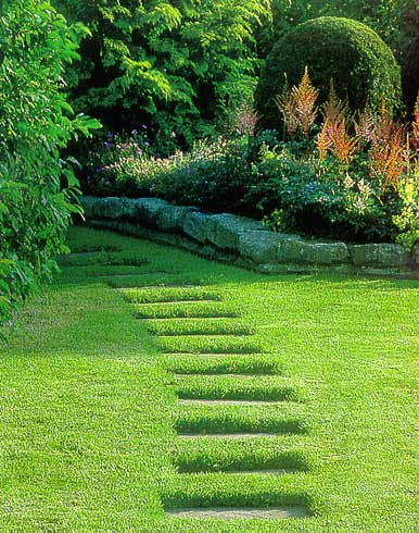 Garden Paths and Footpath in my Garden Pictures and Photos