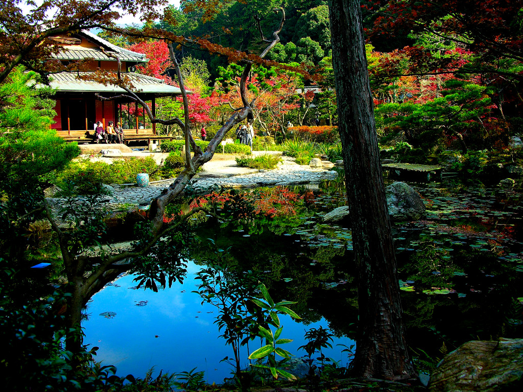 Japanese garden pictures japan garden flowers photo for Best plants for japanese garden