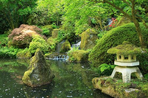 Japanese Garden Pictures Japan Garden Flowers Photo