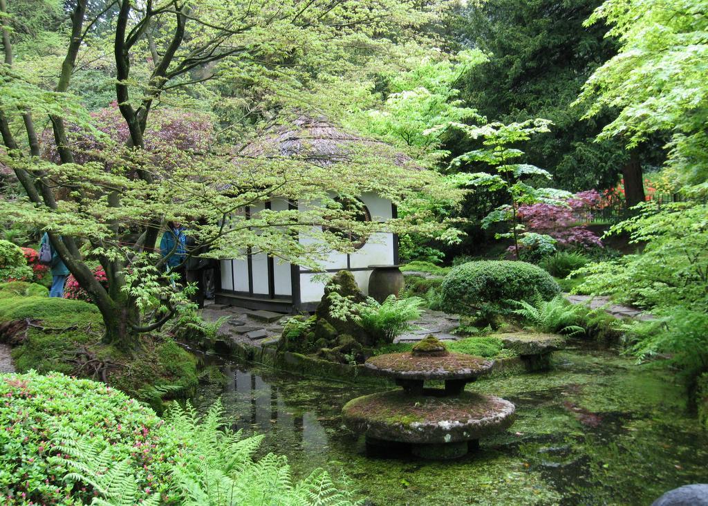 Japanese garden pictures japan garden flowers photo for Japanese patio garden
