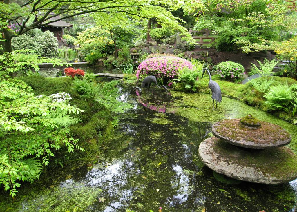 Japanese garden pictures japan garden flowers photo for Bricolaje para jardin