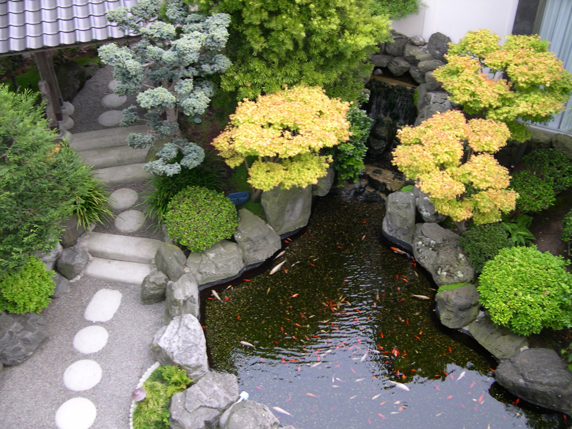 Japanese garden japan garden flowers photos and videos - Jardines japoneses fotos ...