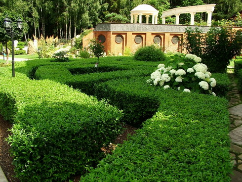 Mistakes in Landscape Design